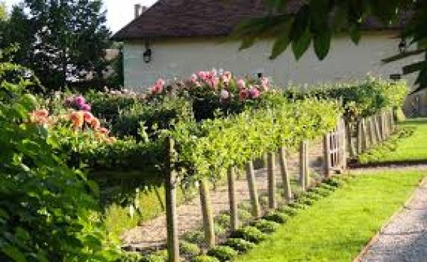 Acceuil site officiel commune sidi bouzid for Entretien de jardins
